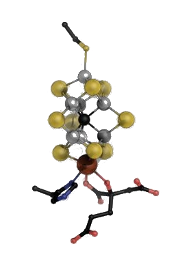 eisen-molybdän-kofaktor